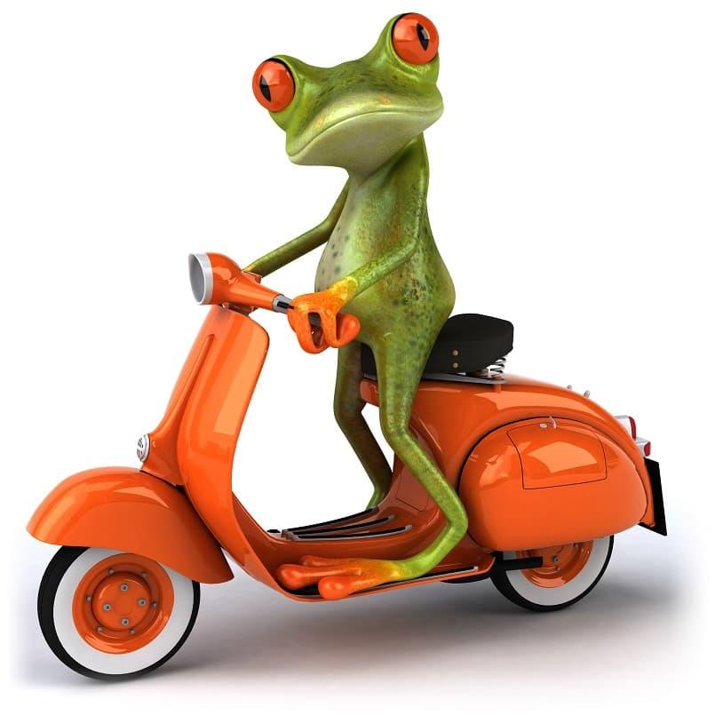 تصویر قورباغه سبز سوار بر موتور وسپا